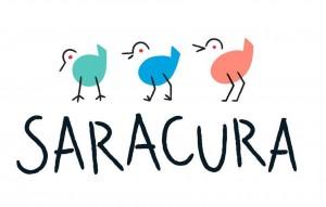 Saracura Carnaval 2