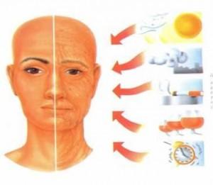 fatores envelhecimento